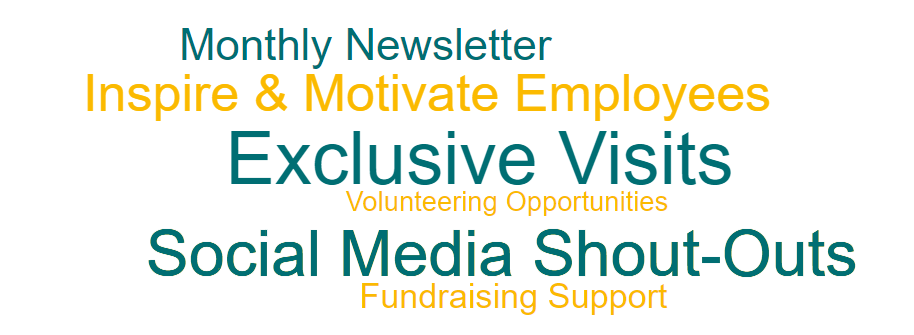 monthly newsletter, inspire and motivate employees, exclusive visits, volunteering opportunities, social media shout outs, fundraising support